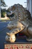 Perfil chinês do dragão Foto de Stock Royalty Free