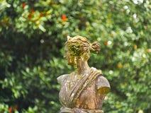 Perfil de um busto de uma mulher Imagem de Stock Royalty Free