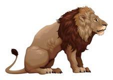 Perfil de um leão de assento Imagem de Stock