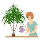 Perfil de uma menina bonita A senhora toma das plantas da sala, os cactos da mandioca A mulher derramou-os para fora Vetor ilustração royalty free