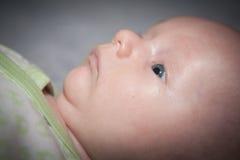 Perfil del bebé Fotos de archivo libres de regalías