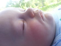 Perfil del bebé durmiente Imágenes de archivo libres de regalías