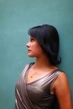 Perfil del brunette magnífico contra la pared Foto de archivo libre de regalías