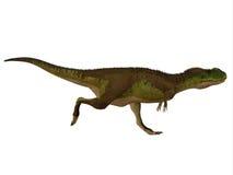 Perfil del lado del dinosaurio de Rugops Imagen de archivo