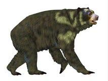Perfil del lado del oso de Arctodus ilustración del vector