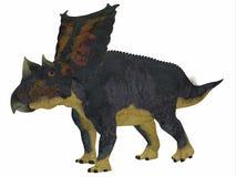 Perfil del lado del dinosaurio del Chasmosaurus Imagenes de archivo