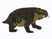 Perfil del lado del dinosaurio de Placerias Fotografía de archivo libre de regalías