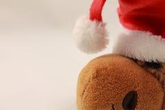 Perfil del retrato de la felpa linda del reno de la Navidad en estudio Fotografía de archivo libre de regalías