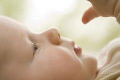 Perfil do bebê que verific para fora a mão, foco macio Fotos de Stock Royalty Free