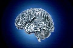Perfil do cérebro do cromo imagens de stock