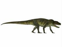 Perfil do réptil de Postosuchus ilustração do vetor