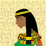 Perfil egipcio antiguo de la mujer sobre un fondo con h egipcio Imagen de archivo libre de regalías