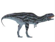 Perfil lateral del Majungasaurus Imagen de archivo libre de regalías