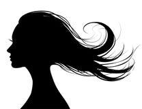 Perfil principal de una mujer hermosa con el pelo del vuelo Fotografía de archivo libre de regalías