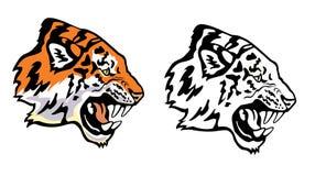Perfil principal del tigre ilustración del vector
