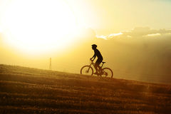 Perfile la bici de montaña de ciclo del campo a través del montar a caballo del uphilll del hombre del deporte de la silueta Fotografía de archivo libre de regalías