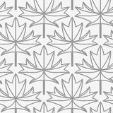 Perforated maple leaves with veins Royalty Free Stock Photos