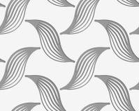 Perforated striped птицы Стоковая Фотография