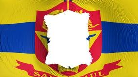 Perforation rectangulaire dans le drapeau de capitale de Saint Paul illustration libre de droits