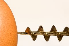 Perfori un uovo Fotografia Stock Libera da Diritti