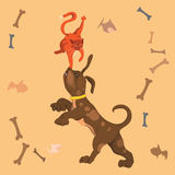 Performance of cat and dog. Circus performance dog and cat Royalty Free Stock Images