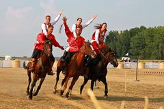 The performance on the horses Stock Photos