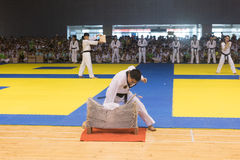 Performance-Opening ceremony--The Eighth GoldenTeam Cup Taekwondo friendly competition Stock Image