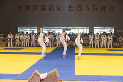 Performance-Opening ceremony--The Eighth GoldenTeam Cup Taekwondo friendly competition Stock Images