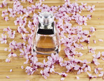 Performe bottle with Cherry Blossoms Stock Photo