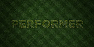 PERFORMER - fresh Grass letters with flowers and dandelions - 3D rendered royalty free stock image Royalty Free Stock Images