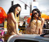 Performers in a carnival, Jamaica Stock Images
