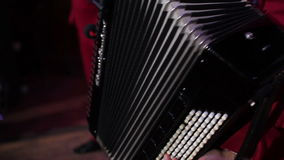 Performing by accordion stock video footage