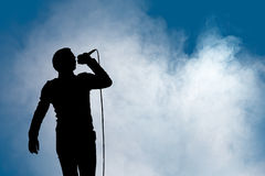Performing Artist At Concert Stock Images