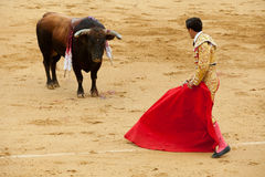 Performing a bullring Stock Photography