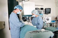 Performing surgery Stock Image