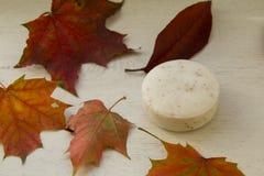 Perfumado friegue el jabón hrbal en otoño Fotos de archivo libres de regalías