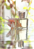 Perfume Imagem de Stock