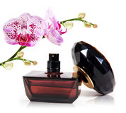 Perfume. Bottle and branch orchid.  on white background Royalty Free Stock Images