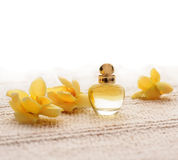 Perfume Royalty Free Stock Images