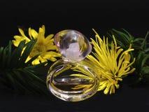 Perfume Imagens de Stock