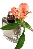 Perfume and an alstroemeria. Flower isolated on white background Stock Photo