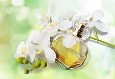 Perfume, Aromatherapy, orquídea Fotos de archivo