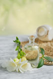 Perfume and aromatic oil Stock Image