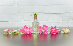 Perfume in beautiful bottle and flower on pink backgroun Royalty Free Stock Image