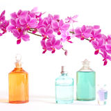 Perfume and beauty set. A series of perfumes and body oils together with a beautiful orchid Royalty Free Stock Photography
