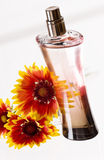 Perfume bottle Stock Image