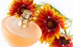 Perfume bottle Royalty Free Stock Photos