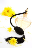 Perfume bottle. Stock Photo