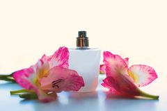 Perfume bottle with a delicate pink flowers. Perfume bottle with a delicate pink fragrance and flowers on white background Stock Photos