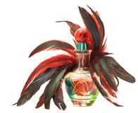 Perfume bottle with feathers. Perfume bottle with red feathers royalty free stock image